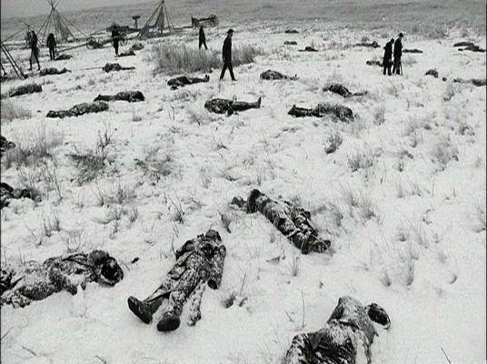 Wounded Knee bodies in snow 1891